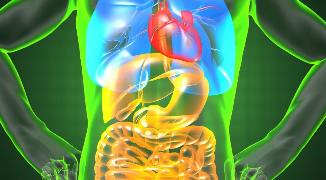 bile flow and liver health