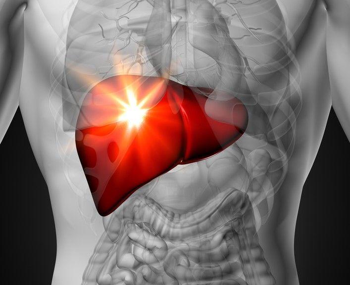 Good Reason To Thwart Fatty Liver Disease Liversupport Com