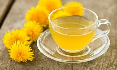 Valuable Herb: How Dandelions Benefit Your Liver