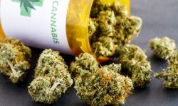 Did You Know? Medical Marijuana and Cancer