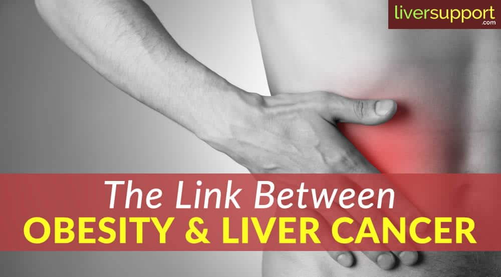 The Link Between Obesity and Liver Cancer