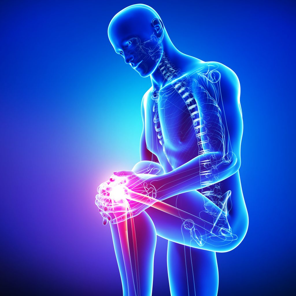 Did You Know? Milk Thistle Can Help Osteoarthritis