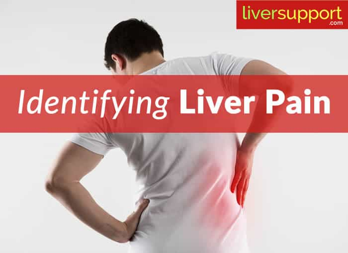 Related Keywords & Suggestions for Liver Ache