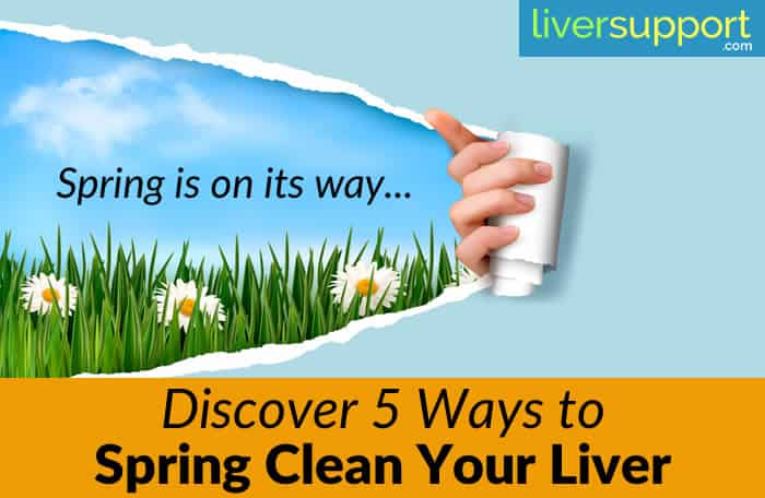 Spring Is the Ideal Time to Clean Your Liver