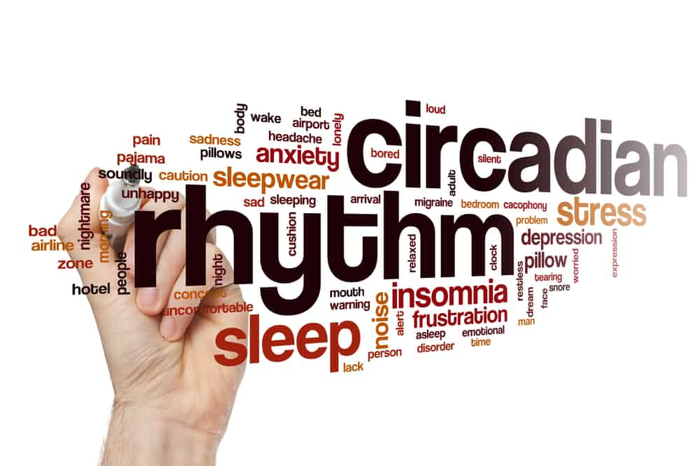 Fat creation and burning are influenced by your circadian rhythms.