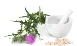 Milk Thistle Dosage: How Much Should You Take?