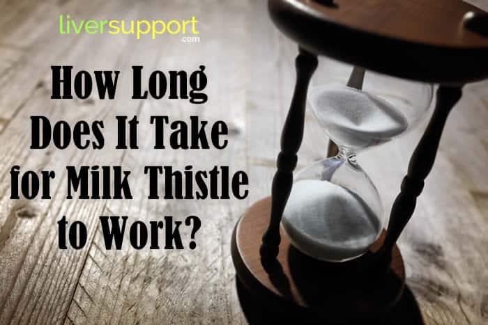 How Long Does It Take for Milk Thistle to Work?