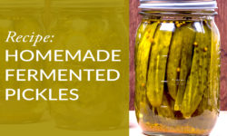 Homemade Fermented Pickles